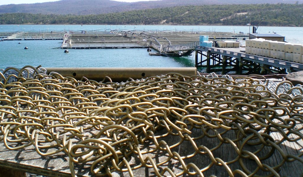 Sustainable (Salmon) Aquaculture